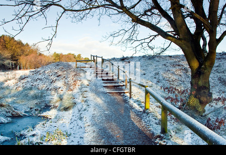 Severe frost and snow steps leading onto Castle Ring in mid-winter Cannock Chase Country Park AONB (area of outstanding - Stock Photo