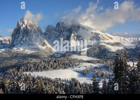 Mount Langkofel / Sassolungo, Seiser Alm / Alpe di Siusi, South Tyrol, Italy - Stock Photo