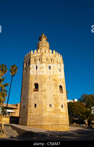 Torre del Oro tower (13th century) along Paseo del Marques del Contadero riverside promenade Seville Andalusia Spain - Stock Photo