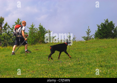 Italy : a man is trekking with his Dobermann dog on a path of Venetian pre-Alps. - Stock Photo