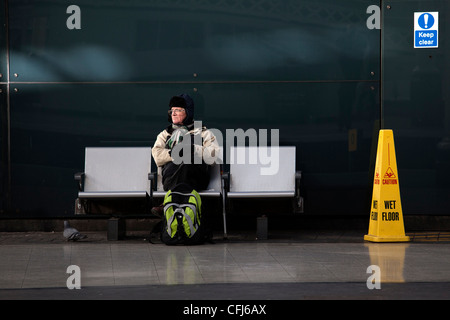 Traveller and pigeon, Newcastle Central Station - Stock Photo