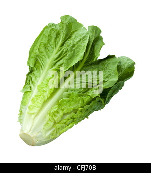 Romaine Lettuce isolated on white - Stock Photo