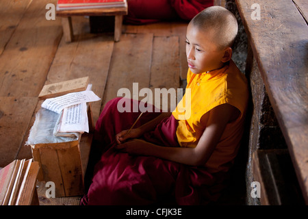 Young Buddhist monk studying scripts in class at Chimi Lhakhang Temple, Punakha Valley, Bhutan, Asia - Stock Photo