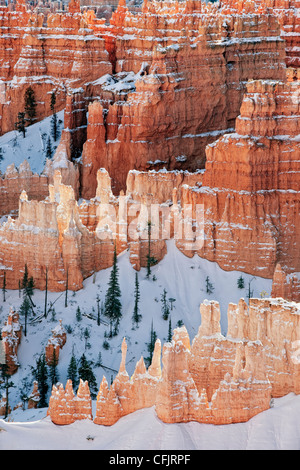 Reflective light illuminates the amphitheater of snow capped hoodoos from Sunrise Point in Utah's Bryce Canyon National - Stock Photo