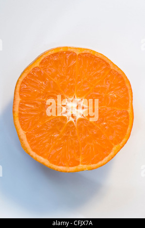 Studio shot of single Clementine orange halve, which are a variety of mandarin orange, displayed on a muted white - Stock Photo