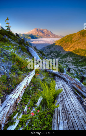 Mount Saint Helens and Spirit Lake from Norway Pass Trail; Mount Saint Helens National Volcanic Monument, Washington. - Stock Photo