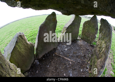 Inside Carreg Samson, a prehistoric neolithic burial chamber, Abercastle, Pembrokeshire, Wales - Stock Photo