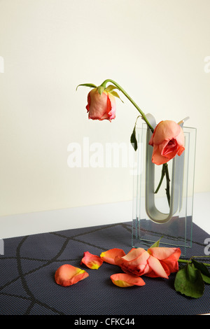 Wilting red Roses in Glass Vase - Stock Photo