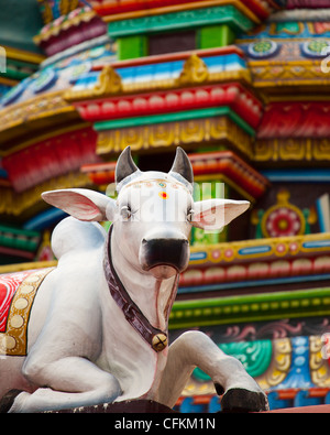 Sacred Hindu Cow Statue - Stock Photo