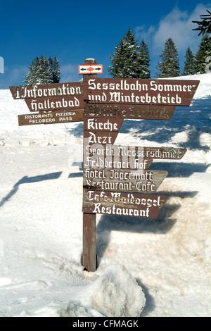 Winter at Feldberg, Black Forest, Baden-Wurttemberg, Germany, Europe