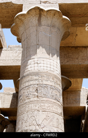 Kom Ombo. Egypt. Africa. Example of the fine detail found on all the columns at the Temple of Kom Ombo. - Stock Photo