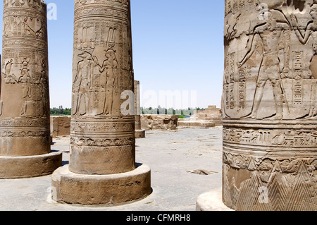 Kom Ombo. Egypt. Africa. View of the highly decorated columns which still preserve clear traces of painting in the - Stock Photo