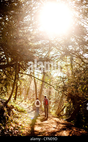 Two people walk along a footpath as the sun shines through trees in the Wye Valley. - Stock Photo