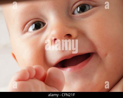 portrait of 6 months male child baby boy in blue eye - Stock Photo