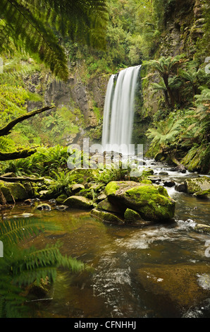 Hopetoun Falls, Great Otway National Park, Victoria, Australia, Pacific - Stock Photo