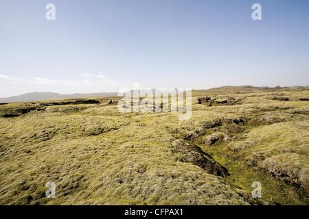 Moss covered lava field, Lakagigar, Iceland - Stock Photo