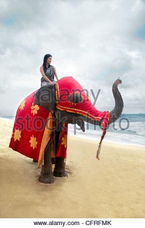 Sri Lankan woman sitting on an Asian elephant in festival attire on beach, Sri Lanka, Indian Ocean, Asia - Stock Photo