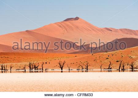 Dead Vlei, Namib-Naukluft Park, Namibia - Stock Photo