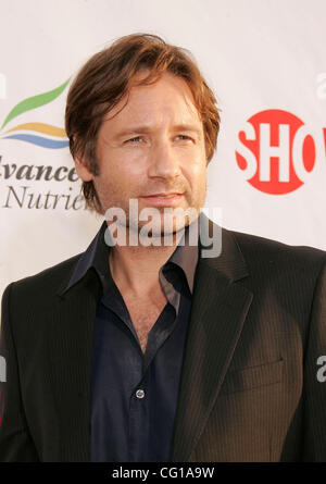 Aug 1, 2007 - Hollywood, California, USA - Actor DAVID DUCHOVNY at the Premiere of Showtime's 'Weeds' and 'Californication' - Stock Photo