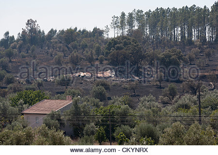 Tomar, Portugal. 4th September 2012. landscape following massive forest fires near Tomar in Santarem district of - Stock Photo
