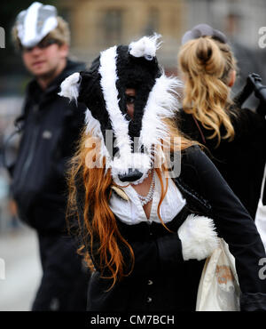 Trafalgar Square, London, UK. 21st October, 2012. Protesters dressed as badgers dance in Trafalgar Square to protest - Stock Photo