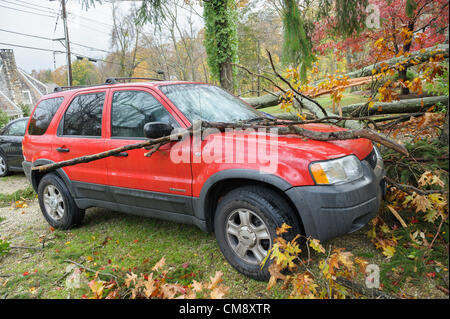 Chappaqua, NY, USA 30 Oct 2012: Hurricane force winds from Hurricane Sandy hit Westchester County New York Monday. - Stock Photo