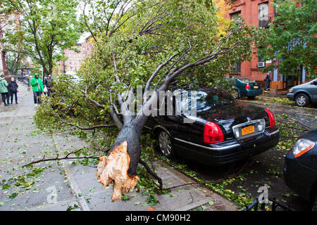 A fallen tree has crushed a car. The aftermath of Hurricane Sandy can be seen on the streets of New York city, USA. - Stock Photo