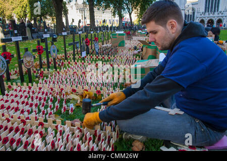 London, UK. 4th Nov, 2013. A volunteer from The Royal British Legion helps to plant thousands of tribute crosses - Stock Photo