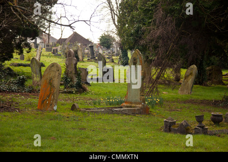 old headstones covered in lichen in cemetery/ graveyard - Stock Photo