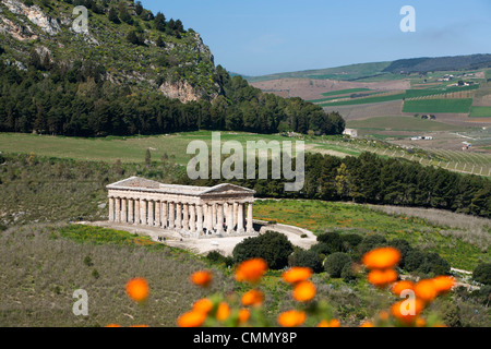 View over the Greek Doric Temple, Segesta, Sicily, Italy, Europe - Stock Photo