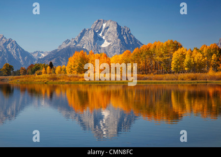 WY, Grand Teton NP, Mount Moran and aspen trees reflected in Snake River - Stock Photo