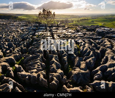 Limestone pavement above the cliff of Malham Cove in the Yorkshire Dales National Park England - Stock Photo