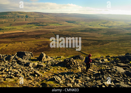 Walker descending from Pen-y-Ghent, one of Yorkshire's Three Peaks - Stock Photo