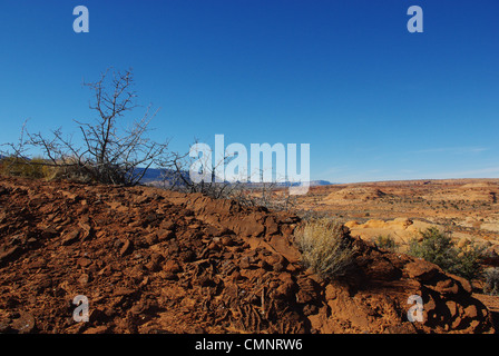Red rocks and dry plants with a view near Peek-a-boo slot canyon, Utah - Stock Photo