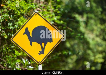 Cassowary crossing sign.  Daintree National Park, Queensland, Australia - Stock Photo