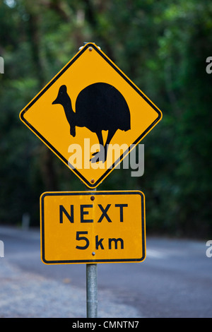 Cassowary crossing sign.  Daintree National Park, Daintree, Queensland, Australia - Stock Photo