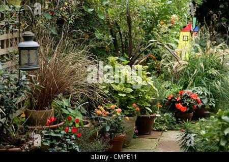 Patio garden in the autumn, London, UK - Stock Photo