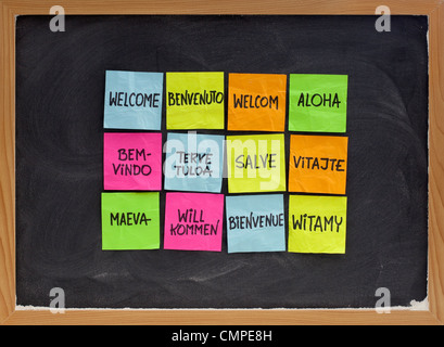 welcome in a dozen of languages - array of colorful sticky notes on blackboard with white chalk texture - Stock Photo