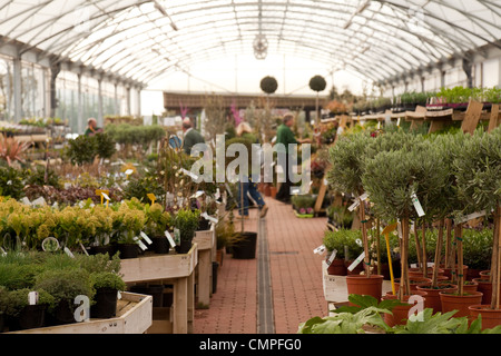 Marvelous Garden Centre Uk Stock Photo Royalty Free Image   Alamy With Fascinating  People Shopping At A Garden Centre Cambridgeshire Uk  Stock Photo With Amusing Edgings For Gardens Also Cat Garden Ornaments In Addition Lyme Park Gardens And Gardening Toys As Well As Garden Turf Supplies Additionally Garden World Flushing From Alamycom With   Fascinating Garden Centre Uk Stock Photo Royalty Free Image   Alamy With Amusing  People Shopping At A Garden Centre Cambridgeshire Uk  Stock Photo And Marvelous Edgings For Gardens Also Cat Garden Ornaments In Addition Lyme Park Gardens From Alamycom