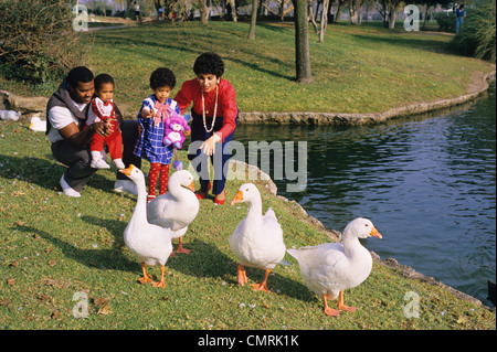 1980 1980s AFRICAN AMERICN FAMILY MOTHER FATHER SON DAUGHTER FEEDING GEESE BY LAKE - Stock Photo