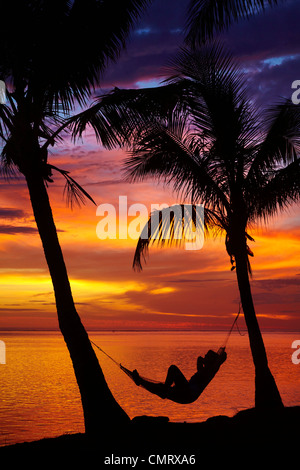 Woman in hammock, and palm trees at sunset, Coral Coast, Viti Levu, Fiji, South Pacific - Stock Photo