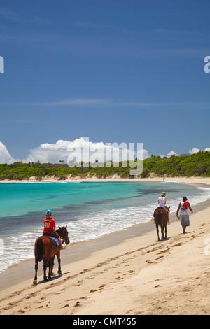 Children on horses, Natadola Beach, Coral Coast, Viti Levu, Fiji, South Pacific - Stock Photo