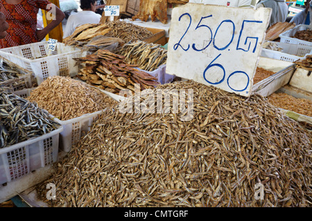 Sri Lanka - Colombo, dried and salted fish at the market - Stock Photo