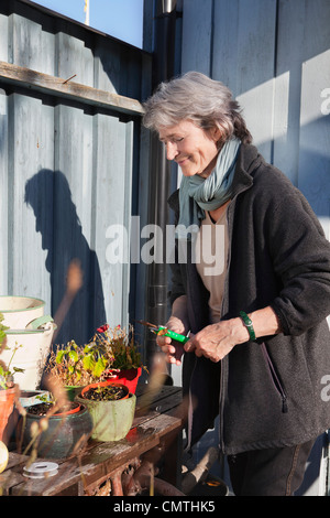 Senior woman taking care of plants - Stock Photo