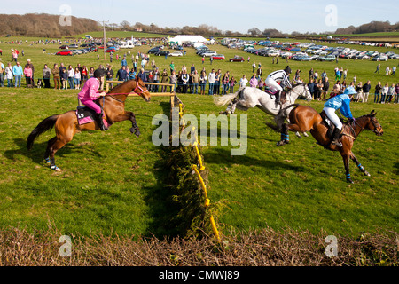 Isle of Wight England UK, Ryde, Apse Heath, Scurry, Grand National - Stock Photo