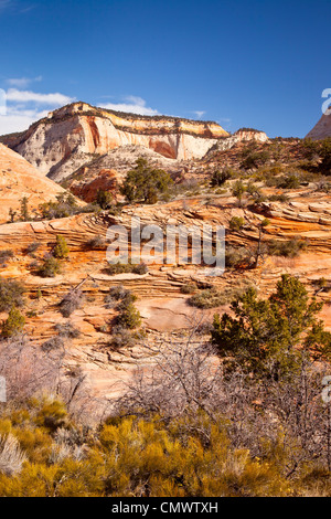 Rock Formations, Zion National Park, Utah USA - Stock Photo