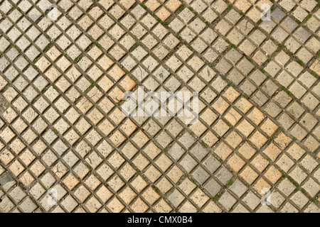 Dirty old beige colour square shapes paving slabs close up. - Stock Photo