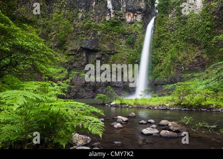 Nandroya Falls in Wooroonooran National Park, Innisfail, Queensland, Australia - Stock Photo