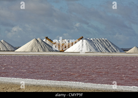 West Indies, Bonaire, Salt pans, Sea salt mine of Pekelmeer - Stock Photo