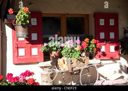 Window box detail with pretty flowers at chamonix. - Stock Photo